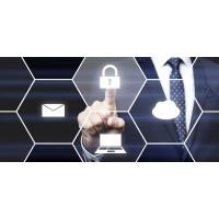 Experto Ejecutivo en Estrategias para la Ciberseguridad
